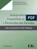 Jurisprudência Consolidada Do TST e Enunciados Das Jornadas - Marcos Scalércio e Tulio Martinez Minto - 2017