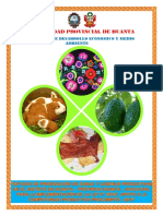 PROCOMPITE - Huanta -  Final.pdf