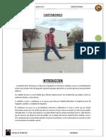 Informe de Topometria - Cartaboneo 17-i