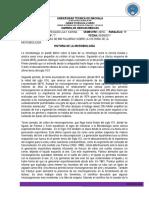 historiamicrobiologiaTRABAJOAUTONOMO1