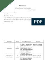 PLAN DE CLASE CIENCIAS.docx