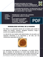 Unidad 3_Clase 3_Fundamentos de Durabilidad de La Madera