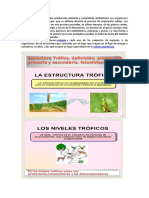 Ecologia Trófic1.docx