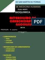 Bq 17 Chi 3 Glicolisis Heli (1)