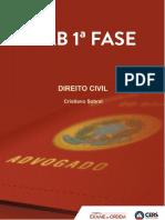 REVISAÇO CRIS 2.pdf