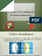 Ciclos cicardianos