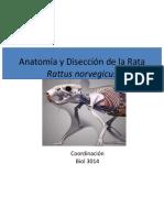 Anatomia de La Rata Externa e Interna Tacher