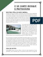 Trabajo Bosque de Proteccion Bocatoma nuevo imperial-CAÑETE