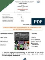 PRESENTACIÓN ARTÍCULOS BIORREACTORES