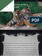 El Currículum Del Tigre