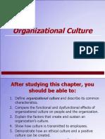 3.Organizational Culture 1