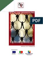 Gestão das organizações.pdf