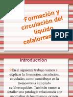 Formación y Circulación Del Líquido Cefalorraquídeo