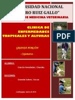 Clinicas de Altura