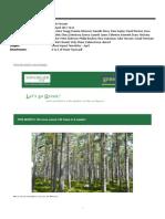 green impact newsletter - april