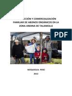 22 Capitalisation - Produccion y Comercializacion Familiar Abonos Organicos ESP-min