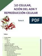 reproduccincelular-131207154040-phpapp02.pptx