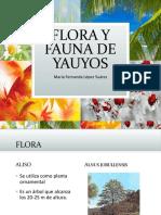 Flora y Fauna de Yauyos (1)