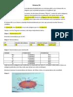 Clase 4. Sistema Rh.docx