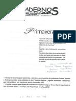 Função Social da Propriedade - Decisão TJ-RS Fazenda Primavera