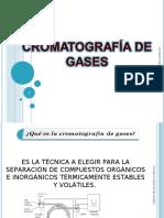 20708873-cromatografia-de-gases.pdf