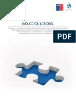 induccion_descargable.pdf