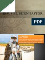 Ovejas Sin Pastor / exposicion ilustrada
