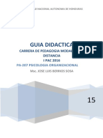 GUIA DIDACTICA Psicologia Organizacional