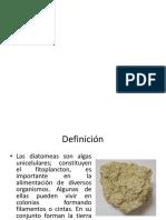 DIATOMITAS.pptx