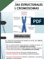 Anomalias Estructurales Del Cromosoma