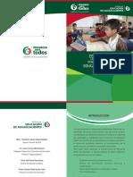 Folleto_estrategia_RUTA DE MEJORA.pdf