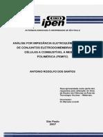 2007SantosAnalise (1).pdf