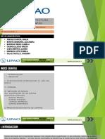 Estructuras - Zapatas PDF