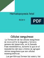 Hematopoyesis Fetal