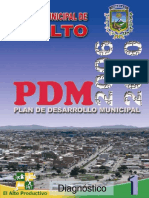 1._DIAGNOSTICO_PDM_2006-2010[1]