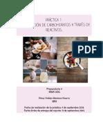 Identificacion_de_Carbohidratos_a_traves (1).docx