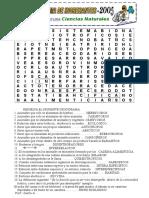 Crucugrma de E Sistema..doc