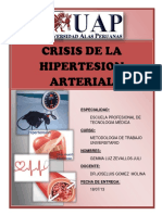 Hipertension Arterial