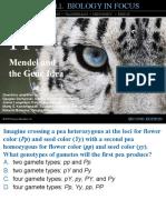 11 Clicker Questions (1) pdf