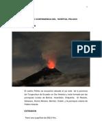 HOSPITAL PELILEO (1).pdf