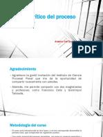 1 Oré Guardia, El Proceso Inmediato en El CPP de 2004 (1)
