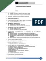 EVALUACION DE IMPACTO AMBIENTAL - JUNIN