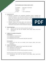 RPP 3.10 JUN.doc