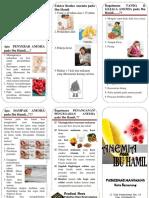 286556420-Leaflet-Anemia-Pada-Ibu-Hamil.docx