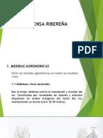 Tipos de Defensa Ribereña1