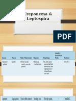 Spirochetes Treponema Leptospira