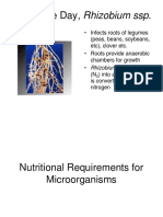 04+Microbiology+Nutrients.ppt