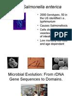 08+Microbiology+Evolution+and+Molecular+analysis+2010.ppt