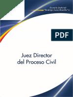JUEZ DIRECTOR DEL PROCESO.pdf