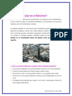 Que es Benceno-guia1.doc